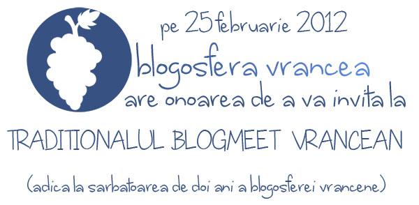 doi-ani-de-blogosfera-vranceana