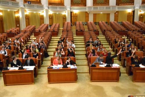 plen Camera deputatilor