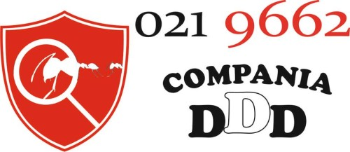 compania ddd