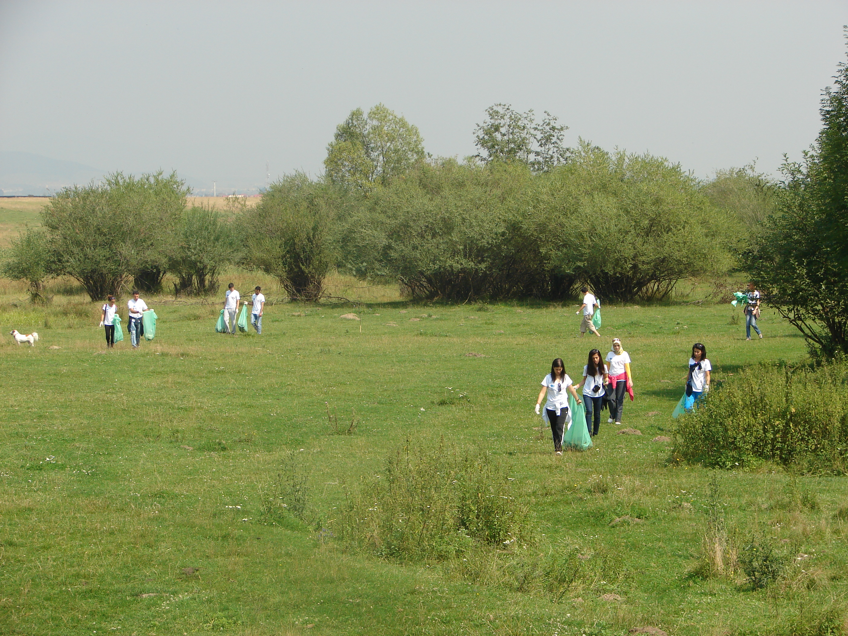 eco-volunteering