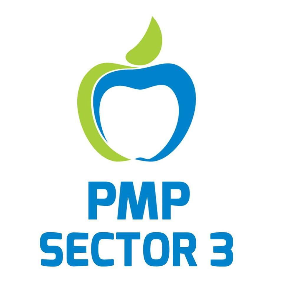 miscarea populara sector 3