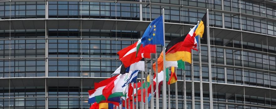 steaguri tari uniunea europeana