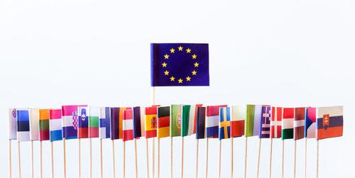 steaguri ue membri state